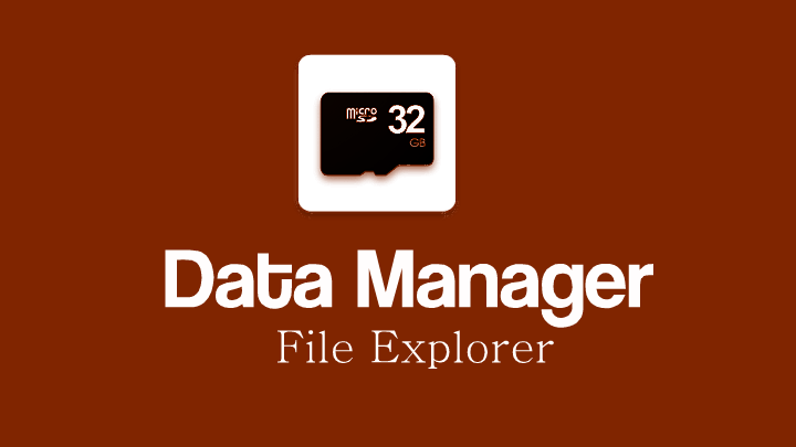 Data Manager (File explorer)