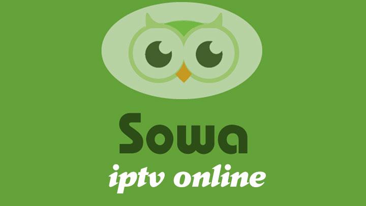 Sowa Pro Guide